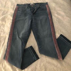 LOFT Mauve Velvet Stripe Jeans Sz 29/8